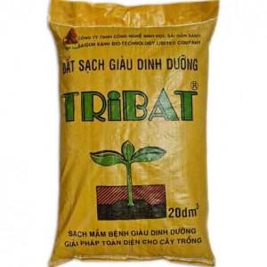 Dat-dinh-duong-Tribat-20dm