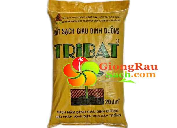 Dat-dinh-duong-Tribat-20dm-trong-rau-sach-tai-nha