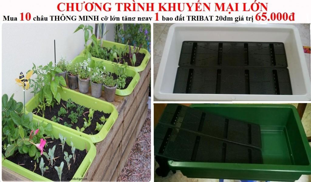Khay-nhua-thong-minh-co-lon