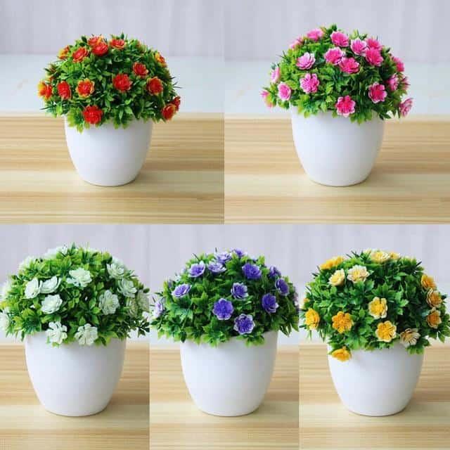 Chậu hoa để bàn bằng nhựa thiết kế nhỏ gọn, linh hoạt.