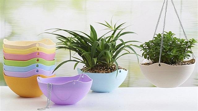 Chậu nhựa trồng cây có nhiều ưu điểm vượt trội, tính tiện lợi cao.