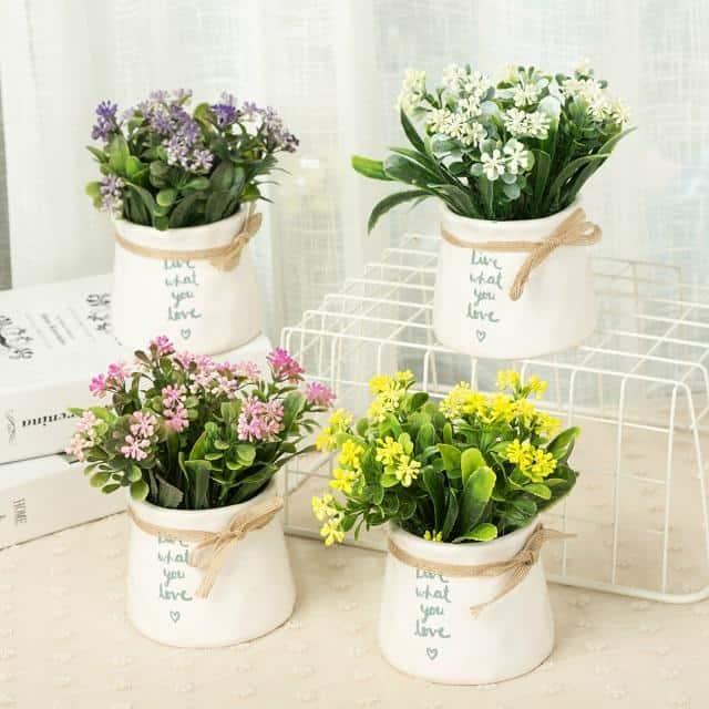 Vẻ đẹp của hoa, cây cảnh giúp đánh bay mọi lo âu, buồn phiền, mệt mỏi.