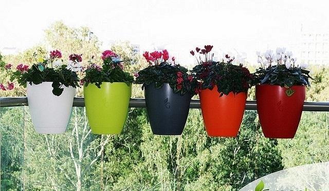 Chậu hoa bằng nhựa thiết kế nhỏ gọn, dễ dàng di chuyển