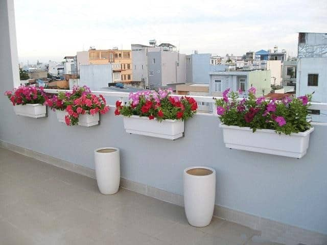 Chậu nhựa trồng hoa có độ bền cao, đa dạng mẫu mã, kiểu dáng, màu sắc