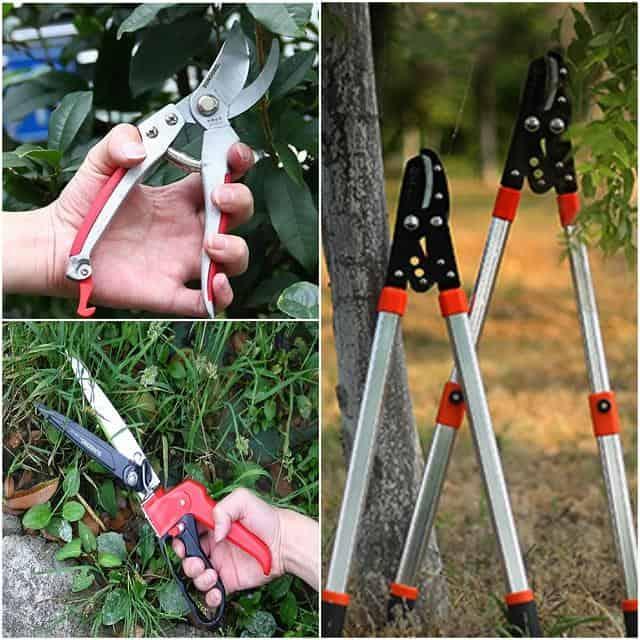 Kéo cắt cành cây trên cao có thể sử dụng để tỉa cành, thu hoạch hoa quả, tỉa bonsai,…