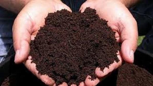 Phân trùn quế mang nhiều dinh dưỡng