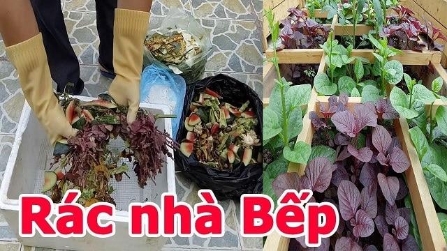Sử dụng rác thải nhà bếp để bón cho rau là việc làm an toàn và khoa học