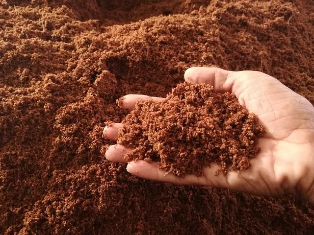 Giá thể xơ dừa trồng rau thủy canh