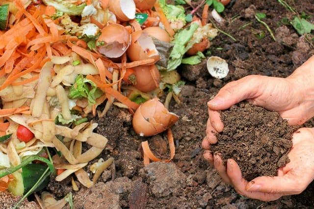 Kỹ thuật ủ phân bón hữu cơ