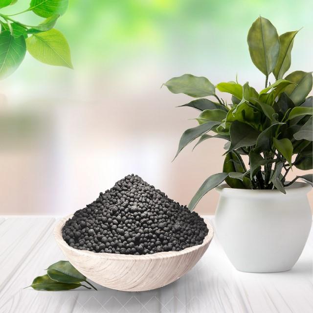 Nên sử dụng phan bon cay canh để cây phát triển tốt.